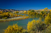 Fall foliage and the Colorado River near Fruita, Colorado, USA.