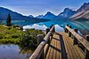 Bow Lake foot bridge which is near a lodge on the shoreline.