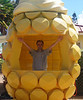 October 15, 2013 - (Dole Plantation, Honolulu County, Wahiawa, Hawaii) -- Jonathon at the Dole Plantation