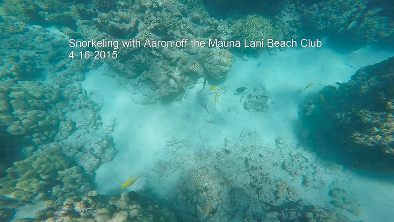 GoPro 4-16-15 Snorkeling with Aaron off the Mauna Lani Beach Club