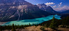 Peyto Lake Panorama. This is one of many delightful short side trips off the Icefields Parkway.