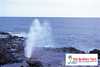 Spouting Horn/When ocean water spouts from the cavity in the rock ledge, a foghorn sound is heard.