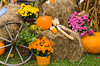 Fall foliage and pumpkins and autumn decor in Danville, Vermont, USA.
