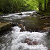Tumble Near Tumble Far- Middle Prong Little River (Tremont Area - Great Smoky Mountains National Park)