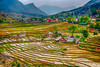 Terraced fields on the hillside and Lao Chai Village near Sapa, Vietnam, Asia.