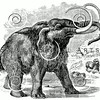 Vintage Woolly Mammoth Illustration - 1800s Extinct Mammoths Images