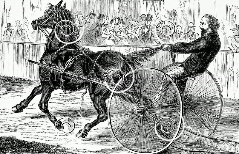 Vintage Horse and Buggy Illustration - 1800s Horses Images.
