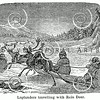 Vintage Reindeer Sled Illustration - 1800s Deer Sleigh Images.