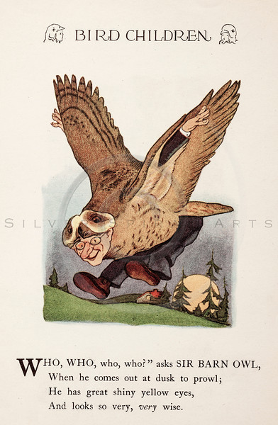 Vintage 1900s Color Illustration of Barn Owl Bird Children from