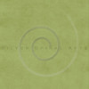 Vintage Olive Green Buckskin Parchment Paper Background