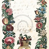 Vintage 1800s Color Illustration of Flower Border - CHRISTIAN FAMILY.