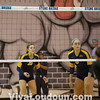 County @ Stone Bridge VB 14550