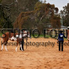 WAQHA Horse Photography 2014 Winter Series