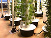 pipe plant towers - dirt and:or hydroponic