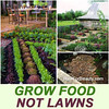 grow food - not lawns 2