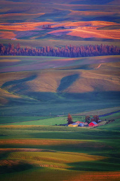 Sunset on Palouse