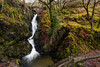 Aira Force 1