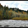 Autumn Along the Clackamas River