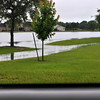 The Lake has found the low spot behind the house and is out of it's banks Wednesday 05/27