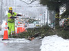 A Flagger Force Traffic Control worker clears downed branches from Main St  in North Wales Borough on Wednesday afternoon February 5,2014. Photo by Mark C Psoras/The Reporter