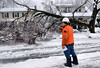 A PECO Lineman asses the damage from a fallen tree onto a residence along Prospect Ave in North Wales Borough on Wednesday afternoon February 5,2014. Photo by Mark C Psoras/The Reporter