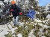 Sal Lombardo clears snow,ice and downed branches from a walkway along North Wales Rd in Upper Gwynedd on Tuesday afternoon February 4,2014. Photo by Mark C Psoras/The Reporter