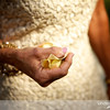 20130623_LaurenBrad_Wedding_1420