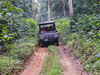 Road through the Congo forests of Odzala-Kokoua National park outside the village of Mbomo.