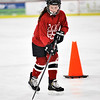 70 Youth Hockey Squirt 1 and Pee Wee 3