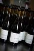 Pinot Noir labeling_2016