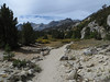 trail along Rock Creek, Eastern Sierra, September 2013
