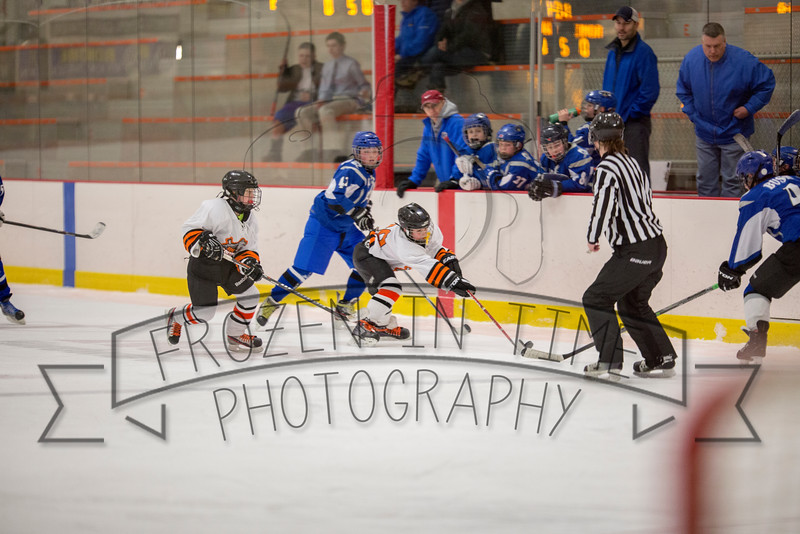 red vs oswego 2-27-15 917