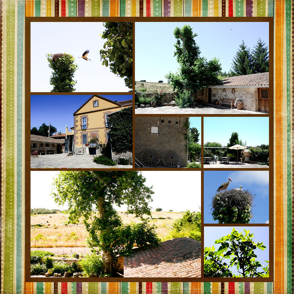  book molino 59 garden