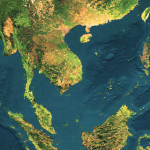 The Indochinese Forests