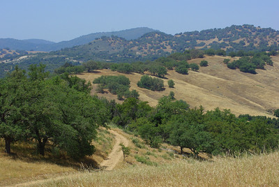 5/17/13 Santa Ysabel Open Space Preserve