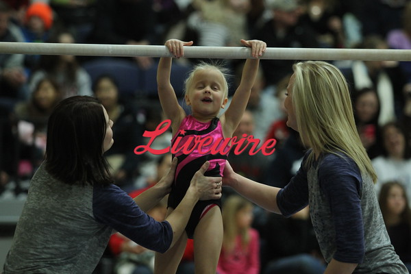 Youth Gymnastics 1-4-15