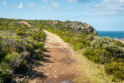 2013.5.4 - Robberg Nature Reserve