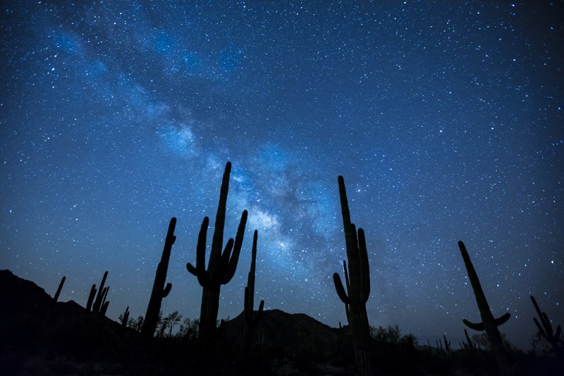 Low Light Photography Tips -