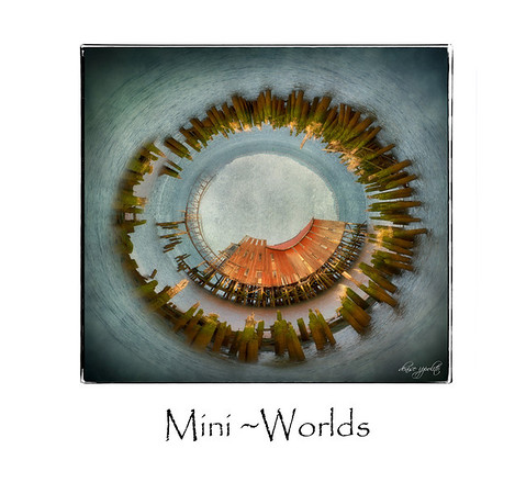 Mini Worlds and Flipped Images