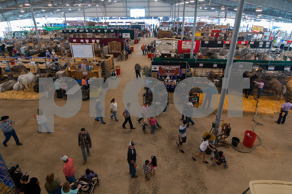 March 15, 2014 - Rio Grande Valley Livestock Show_lg