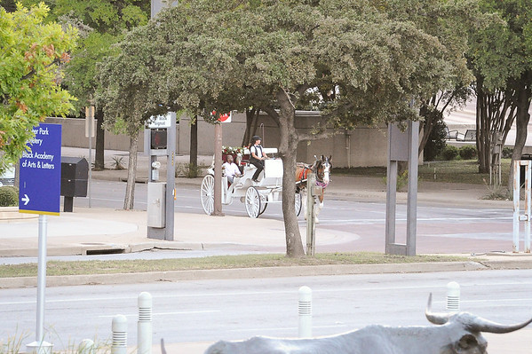 Idong and Udeme's horse and carriage proposal, Dallas.