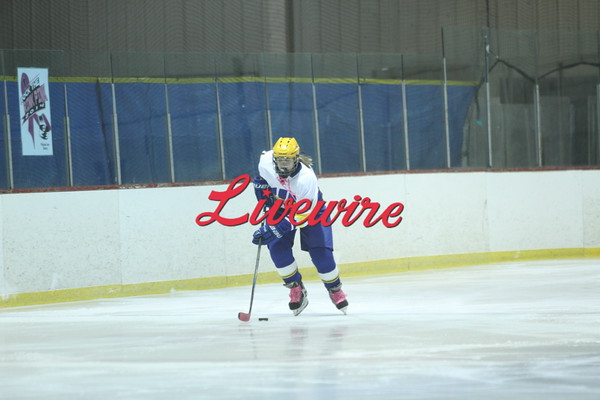 Hockey vs Worthington 12-4-14
