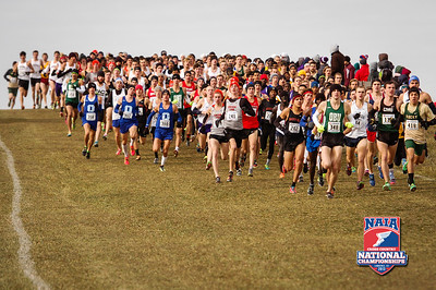 NAIA Cross Country National Championship - 2013