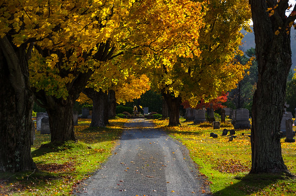 Autumn in Vermont 2014