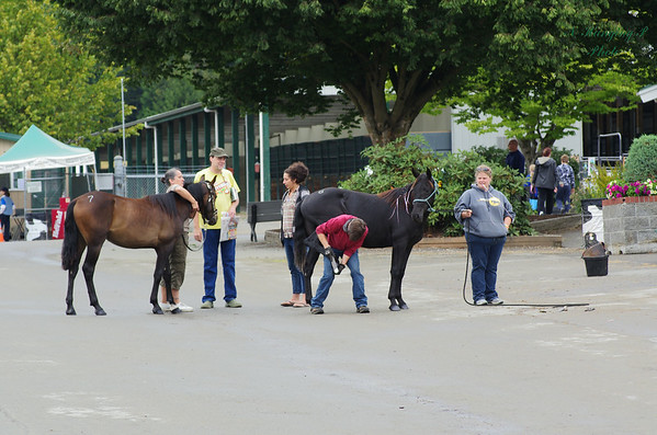 MYWY Evergreen State Fair 2014