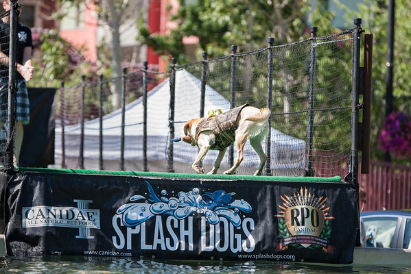 06/15/2012 Buddy Sacco - Splash Dogs - Reno River Fest