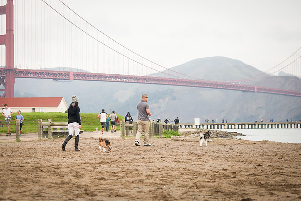 Proposal Photography – San Francisco Proposal – Vu's Crissy Field Engagemen