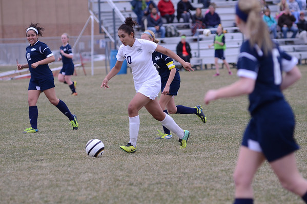 OE Girls Soccer Season 2014