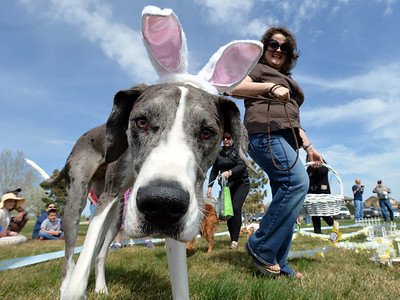Paws in the Park Easter Egg Hunt for Dogs