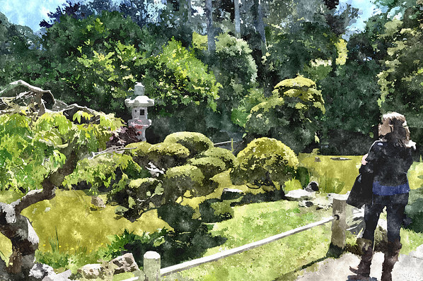 Japanese, Garden, San, Francisco, PhotoIllus